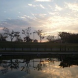 『11月18日スカイツリーカヌーツアー(早朝)』の画像