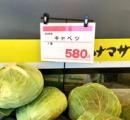 キャベツ一玉580円、白菜一玉798円…野菜の価格高騰が止まらない
