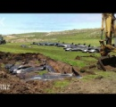 NZでまたゴンドウクジラ50頭以上が死亡  海水温上昇が関連か【南島の東沖800キロのチャタム諸島】
