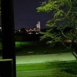 『夜散歩』の画像