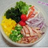 『夏の冷たい麺シリーズ 12-⑤』の画像