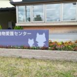 『山本央子先生の講座へ行って来ました☆』の画像