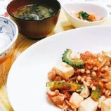 『走り続けた1週間の晩ご飯はゴーヤと豆腐』の画像