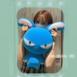 『【乃木坂46】おい!!!ぬいぐるみ・・・そこかわれ!!!!!!』の画像