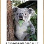 OYAJIのフライト日記