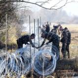 『野生動物を犠牲にする難民阻止用のフェンス』の画像