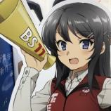 『ビックカメラの桜島麻衣さん』の画像