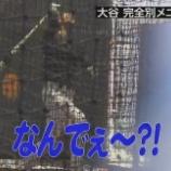 『もしかして大谷翔平ってWBC辞退の件で一生叩かれる?』の画像