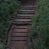 『逢瀬階段の作者だが、階段にまつわる都市伝説を知ってる人きてくれ』の画像