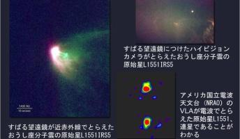 発見されてる中で宇宙最大の星 L1551-IRS5 直径148億40,000,000km