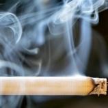 『喫煙によるDNAの損傷』の画像
