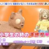 『【乃木坂46】齋藤飛鳥が小学生のときに作った人形が怖すぎる件・・・』の画像