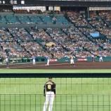 『甲子園~'17.7月 阪神vs.DeNA』の画像