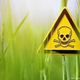 『政府はなぜ日本に毒をまくのか?』の画像
