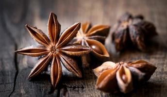 """【猛毒注意】中華料理の香辛料""""八角""""にそっくりな木の実を拾った結果・・・"""