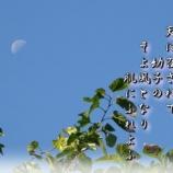 『フォト短歌「星となる」』の画像