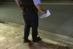 ダックスフントが交野警察に保護されてるみたいですよ~