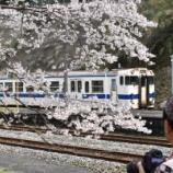 『彦山駅と守静坊の枝垂れ桜』の画像