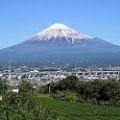 静岡に住むとなったら何処がいいかな