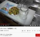 【悲報】人気Youtuberきまぐれクック金子さん「梅ジュース」を作って大炎上してしまう