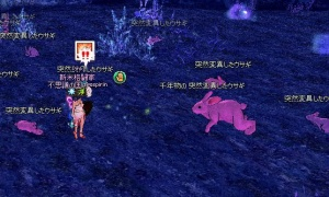 ピンク色のウサギが発見される!!!!!