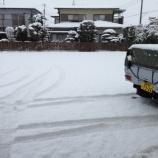『小田原も雪・・・』の画像