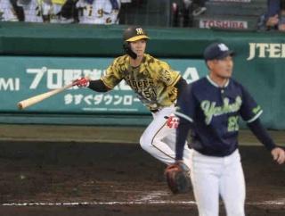 虎の新人は佐藤輝だけじゃない! ドラ6・中野 7試合連続安打が貴重な適時打に