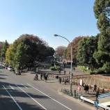 『代々木公園の現状写真とストレポ』の画像