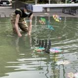 『水中クローバー 葉山芸術祭2021』の画像