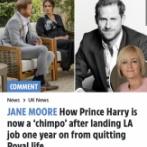 【速報】英王室ヘンリー王子の役職名、「CHIMPO」に決定wwwwwwww