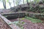 昔のプール跡なのか?倉治公園の裏山に鳥居とともにある四角い何かがある!