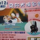 『【飛行犬撮影会開催】11月12日(土)ワイズドギー射水店』の画像