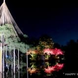 『金沢で香箱蟹を食べる旅:兼六園のライトアップを観る』の画像