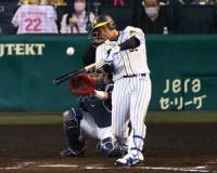関本賢太郎氏 阪神・井上は打球でわかる大山以上の素材 4年後には本塁打王争いか