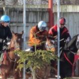 『ブリュメール11調教風景(2012/12/5)』の画像