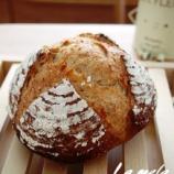 『カンパーニュ、チョコチップメロンパン』の画像