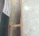 スーパーの床に魚埋まっててワロタ