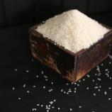 『天日干しの「富士酢の米」、12袋限定販売のご案内』の画像
