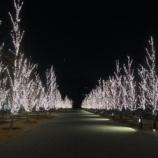 『綺麗!図書館のイルミネーションが純白でエレガント。(岐阜市・みんなの森ぎふメディアコスモス)』の画像