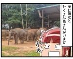 【その③】ピンナワラの象の孤児院に行く事にしたよinスリランカ