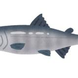 『鮭を川ごと食う奴www』の画像