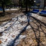 『春の大通公園Spring Odori Park.』の画像