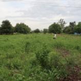 『クマエ蒸留Co,,LTDが土地を取得』の画像