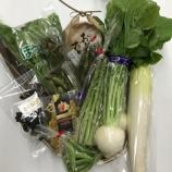 『終了お知らせ「遊佐町産の美味しいお米と野菜の詰め合わせお得パック!」』の画像