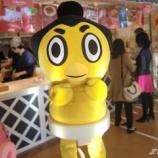 『2016年の大相撲五月場所は5月8日(日)から開催です!』の画像