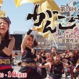 『浜松よさこい祭りこと「浜松がんこ祭」は、来週3/15(土)16(日)です!』の画像