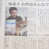 『\これからの犬との暮らし方/ハッピードッグチームの『みんなで保護犬飼い主会員』スタート』の画像