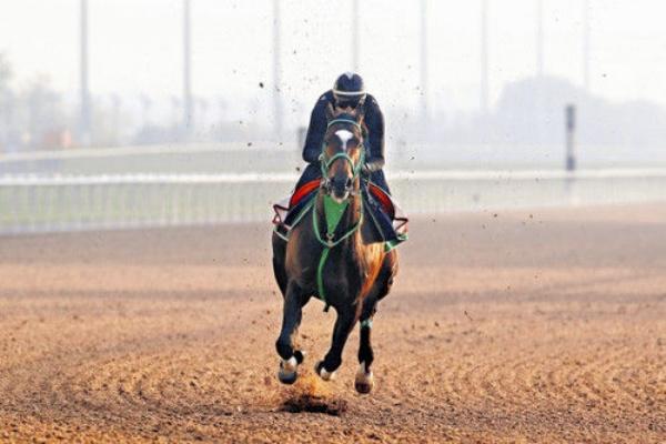 競馬 う まなみ JRA注目の女性騎手「まなみん」こと永島まなみ騎手の初騎乗は馬券圏内...