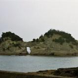 『ililil雨降りの南紀白浜ililil』の画像