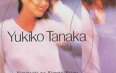 『田中友紀子 「君たちのくれた夏」』の画像